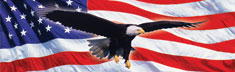 Eagle in Flight Flag