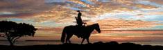 Sunset Tracker